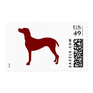 Vizsla (Red) Stamp