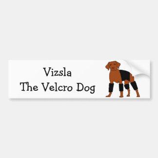 Vizsla The Velcro Dog Bumper Sticker