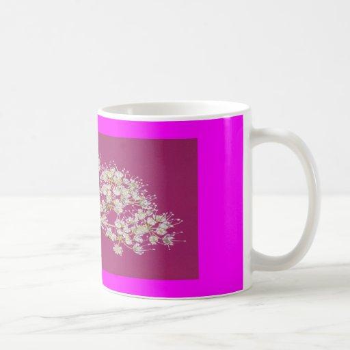 voda taza de café