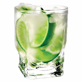 Vodka with Lime Photo Sculpture