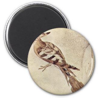 Vogel By Pisanello Best Quality Fridge Magnet