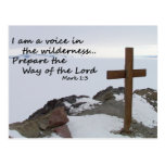 Voice in the Wilderness Postcard