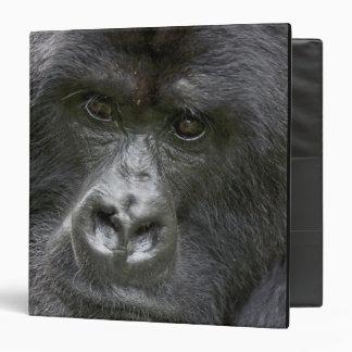 """Volcanes NP, Rwanda, gorilas de montaña, Carpeta 1 1/2"""""""