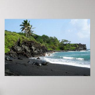 Volcanic black sand beach on Hawaii Poster