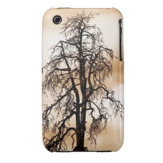 Volcano Tree iPhone 3 Case