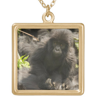 Volcanoes National Park, Mountain Gorilla, baby Gold Plated Necklace
