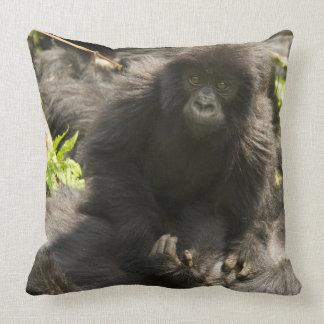Volcanoes National Park, Mountain Gorilla, baby Pillows