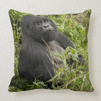 Volcanoes National Park, Mountain Gorilla Throw Pillows