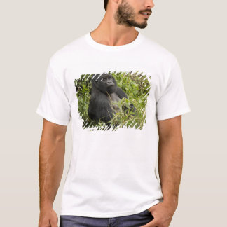 Volcanoes National Park, Mountain Gorilla T-Shirt
