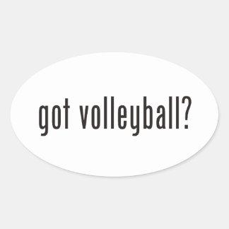¿voleibol conseguido? pegatina ovalada