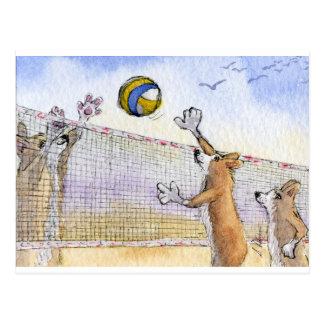Voleibol de playa del perro del Corgi Postal