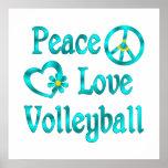 Voleibol del amor de la paz posters