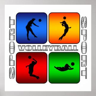 Voleibol espectacular póster