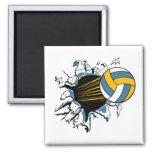 voleibol que rasga a través de azul y del oro iman de nevera