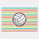 Voleibol; Rayas brillantes del arco iris