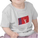 Volgograd Oblast Flag Tee Shirt