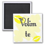 Volim te - Serbian - I Love You Refrigerator Magnets