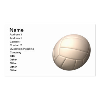 Volleyball 2 Double-Sided standard business cards (Pack of 100)