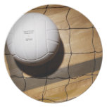 Volleyball and net on hardwood floor of melamine plate