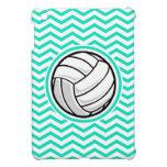 Volleyball; Aqua Green Chevron Case For The iPad Mini