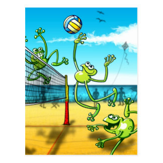 Volleyball Frog Postcard