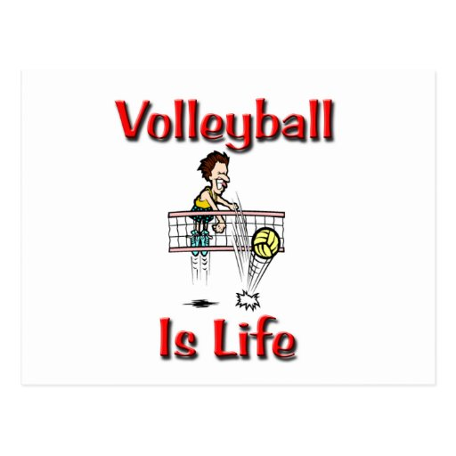Volleyball Is Life Postcard | Zazzle - 24.6KB