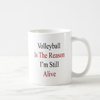 Volleyball Is The Reason I'm Still Alive Mugs