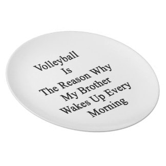Volleyball Is The Reason Why My Brother Wakes Up E Plate