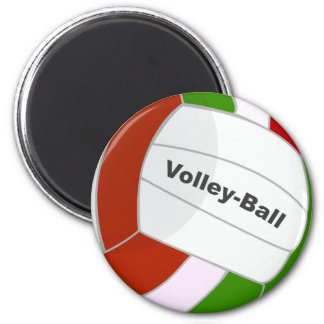 Volleyball Magnet