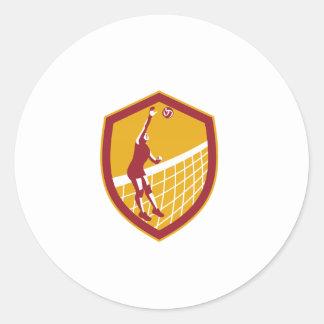 Volleyball Player Spike Ball Net Retro Shield Round Sticker
