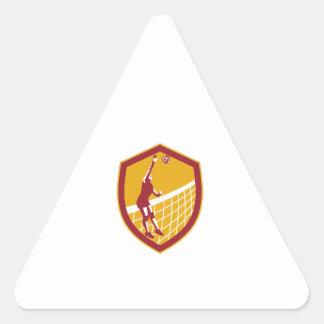 Volleyball Player Spike Ball Net Retro Shield Triangle Sticker