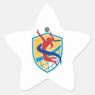 Volleyball Player Spiking Ball Shield Star Sticker