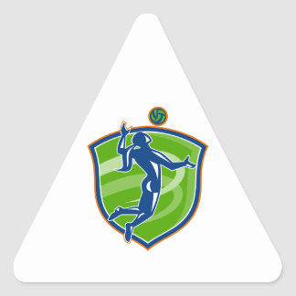 Volleyball Player Spiking Ball Side Shield Triangle Sticker