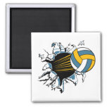volleyball ripping through blue and gold magnet
