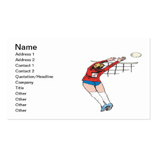 Volleyball Set 2 Double-Sided Standard Business Cards (Pack Of 100)