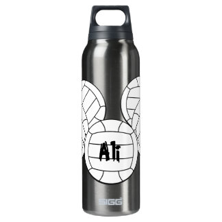 Volleyball 16 Oz Insulated SIGG Thermos Water Bottle
