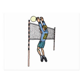 volleyball spike mens volley cartoon graphic postcard