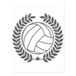 VolleyBall Vintage Graphic Post Card