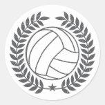 VolleyBall Vintage Graphic Sticker