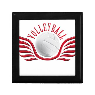 volleyball wings gift box