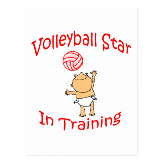 VolleyChick s VolleyBaby Post Card
