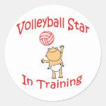 VolleyChick's VolleyBaby Sticker