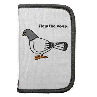 Voló el dibujo animado gris de la paloma del galli planificador