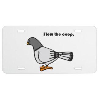 Voló el dibujo animado gris de la paloma del placa de matrícula