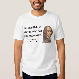 Voltaire Quote 6b Tee Shirt
