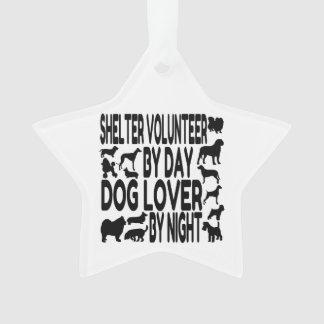 Voluntario del refugio del amante del perro