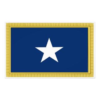 Voluntarios de Tejas Cofederate de la bandera azul Impresiones Fotográficas
