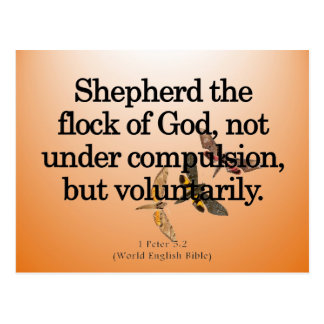 Voluntary Service 1 Peter 5-2 Postcard