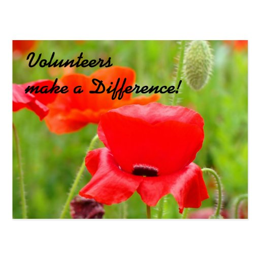 Volunteer Thank You Event post card invitations