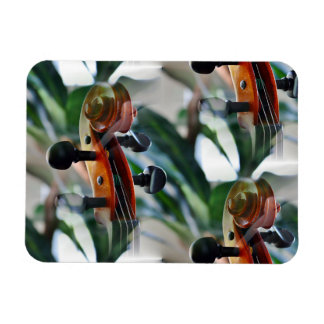 Voluta elegante del violín iman